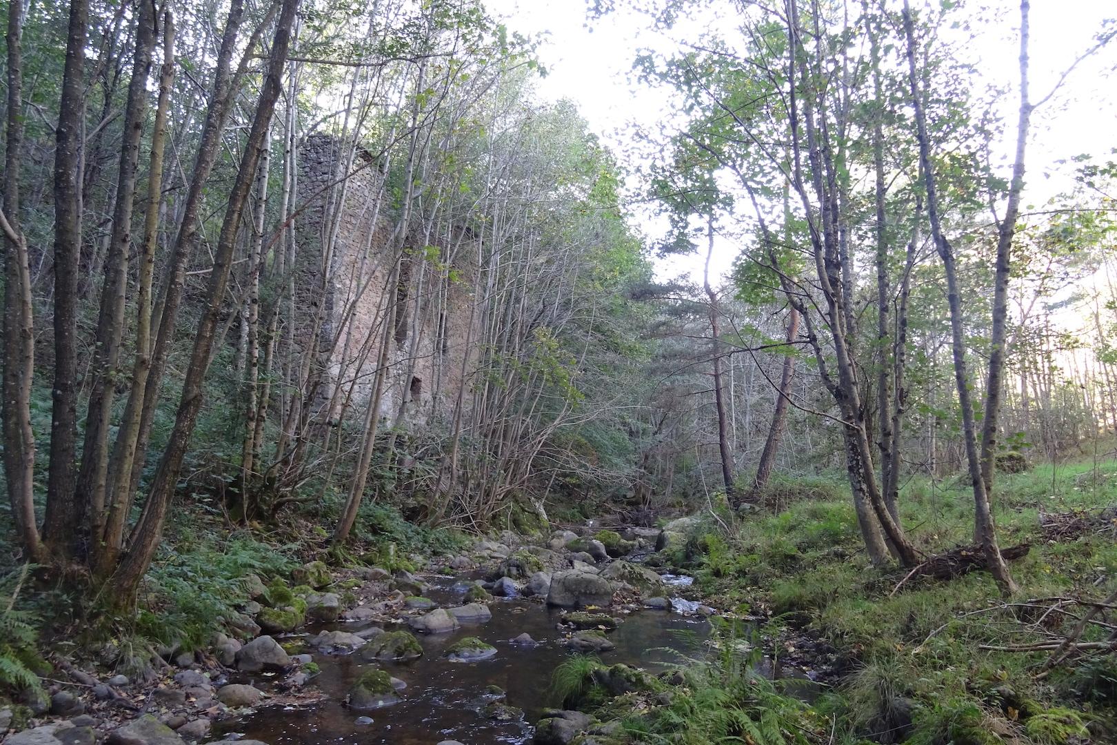 La ruine du vieux moulin, en amont de Chamblard